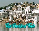 Pushkar Fair Rajasthan Tour
